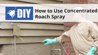 How to Use Concentrated Roach Spray