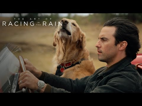 The Art of Racing in the Rain | Denny & Enzo: The Perfect Friendship | 20th Century FOX