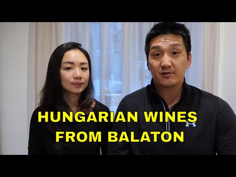Exotic Wine Travel In Balaton, Hungary: Ep 296