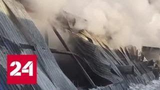 Причиной пожара под Новосибирском могло стать замыкание электропроводки - Россия 24