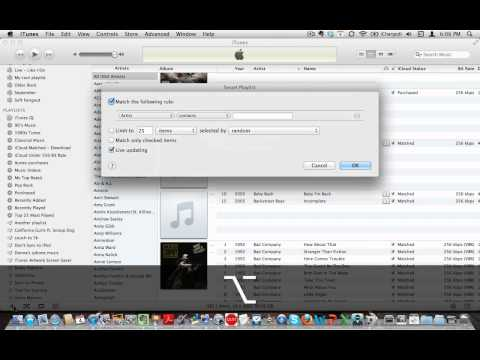 iCloud  iTunes and iTunes Match