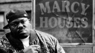 Beanie Sigel - Remember Them Days (Instrumental)