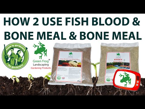How To Use Fish Blood & Bone Meal & Bone Meal