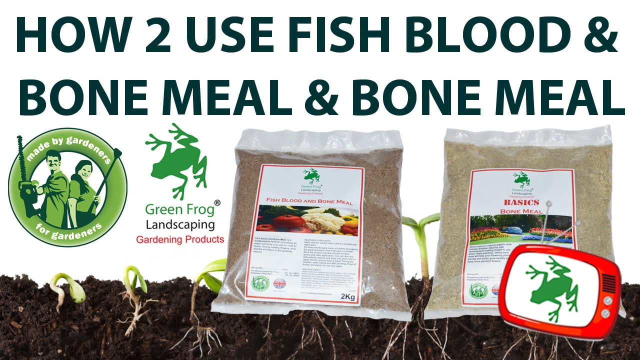 How to use fish blood bone meal bone meal youtube for Fish bone meal