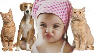 baby, babies, adorable, cats, dogs, dog, puppy, kitten, newborn, baby with pets, pets, dog with baby