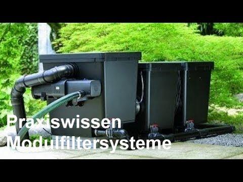 Teichfilter uvc durchlauffilter video einsatz und for Fischteich wasser reinigen