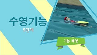 수영기능 5단계 - 기…