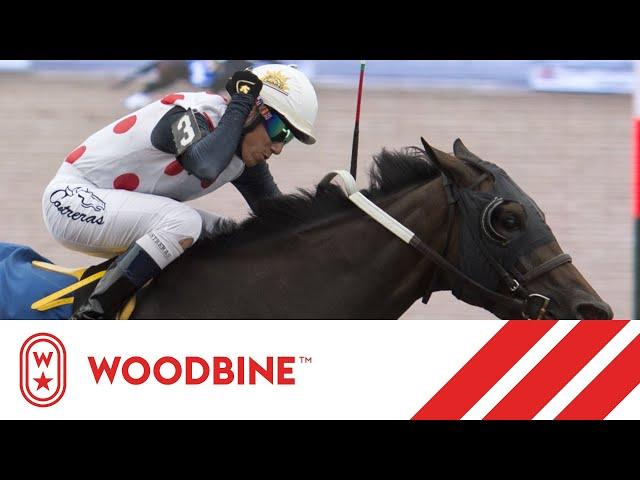 Woodbine Replays - YouTube