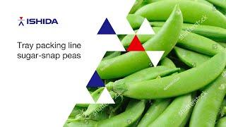 Ishida QX-1100 Traysealer Line. Application: Green Beans