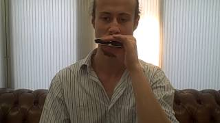 "How to play ""Long Train Running"" on harmonica part 2/2"