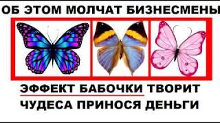"""Эффект Бабочки   Как применять на практике для """"Притяжения денег"""""""