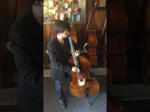 Miami String Showroom - Wilfer 1/4 Upright Bass