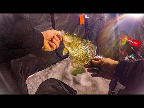 Brushy Creek Ice Fishing (CRAZY BITE)