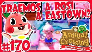 ¿TRAEMOS A ROSI A EASTOWN? #170 ANIMAL CROSSING NEW LEAF WELCOME AMIIBO