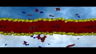 Repeat youtube video Cell Membrane Passive Transport | Cell Biology