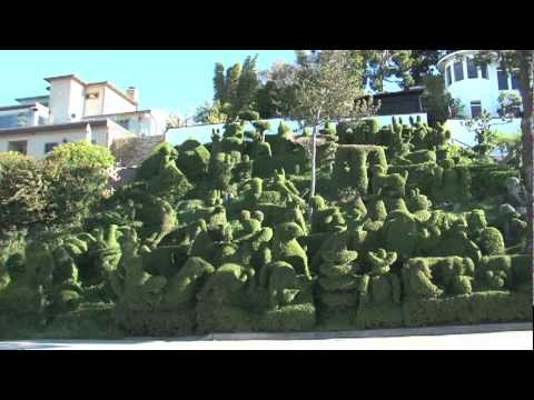 What The ?! (Topiary Garden)