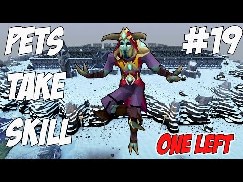 Pets take Skill | Episode 19 [ONE MORE PET!!!] Runescape Gameplay