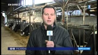 Fin des quotas laitiers