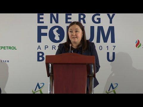 Aida Sitdikova - 4-th Caspian Energy Forum - Baku 2017