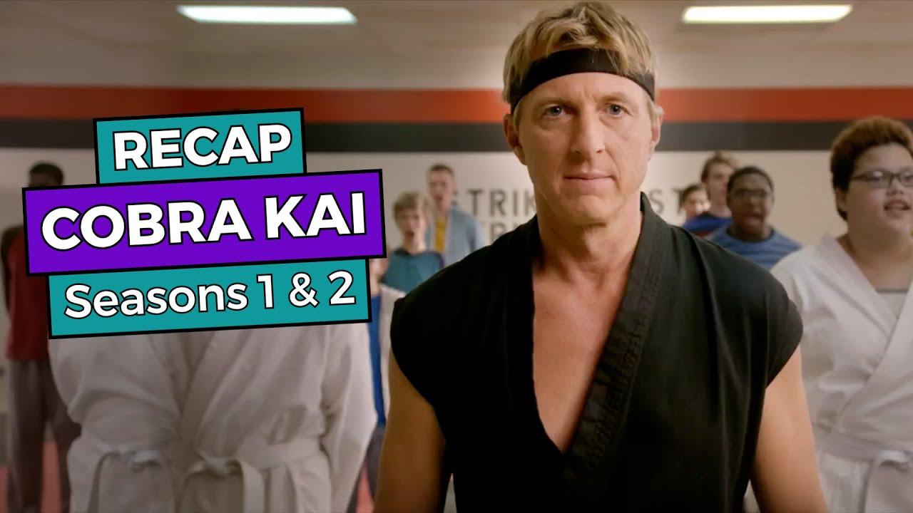 Download Cobra Kai: Seasons 1 & 2 RECAP