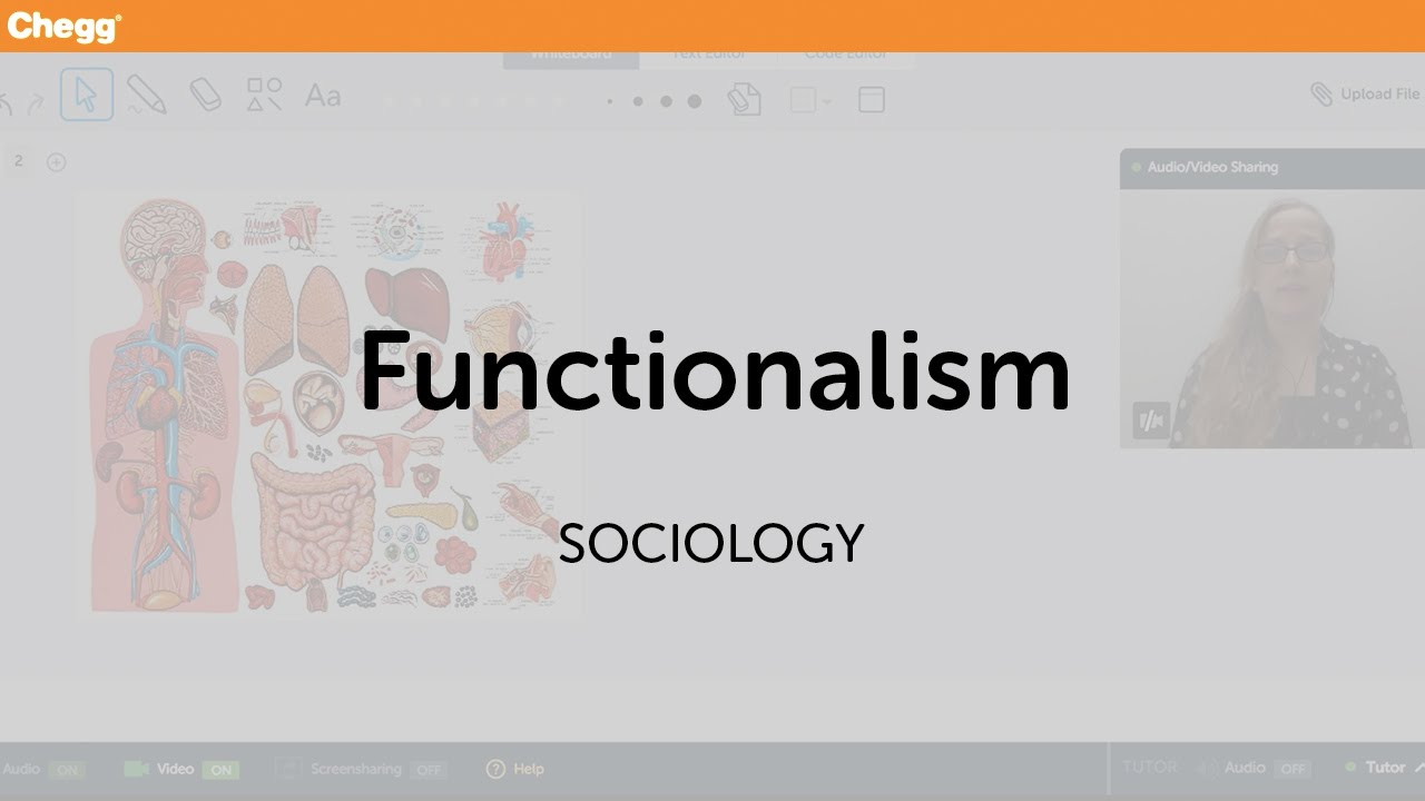 Definition Of Functionalism Chegg Com