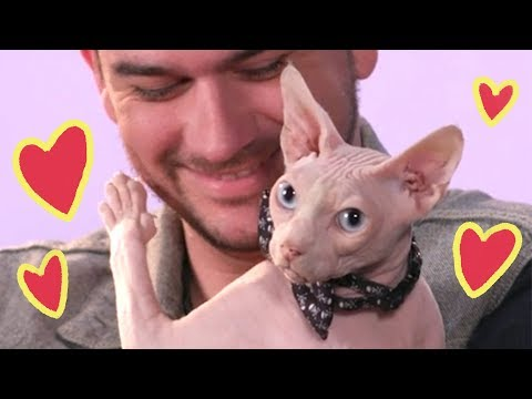 Dudes Get Real Mushy About Their Cats