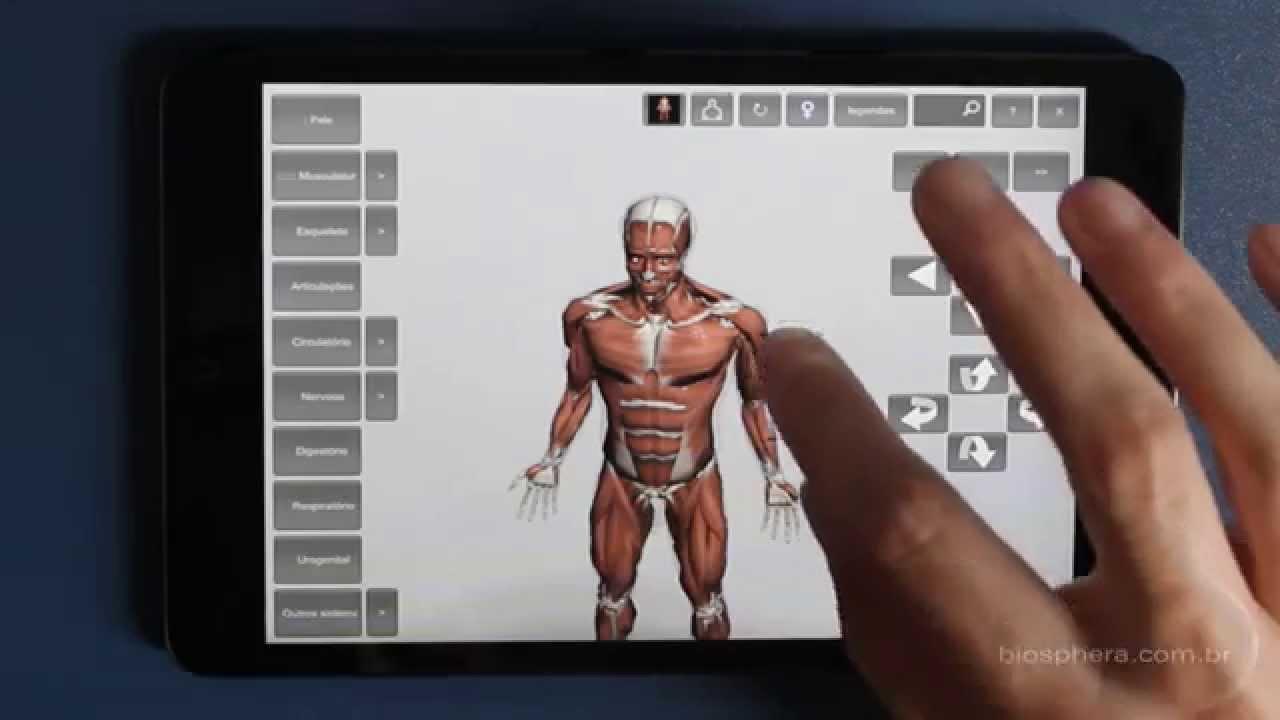 Asombroso Aplicación De La Anatomía Humana Para Android Composición ...