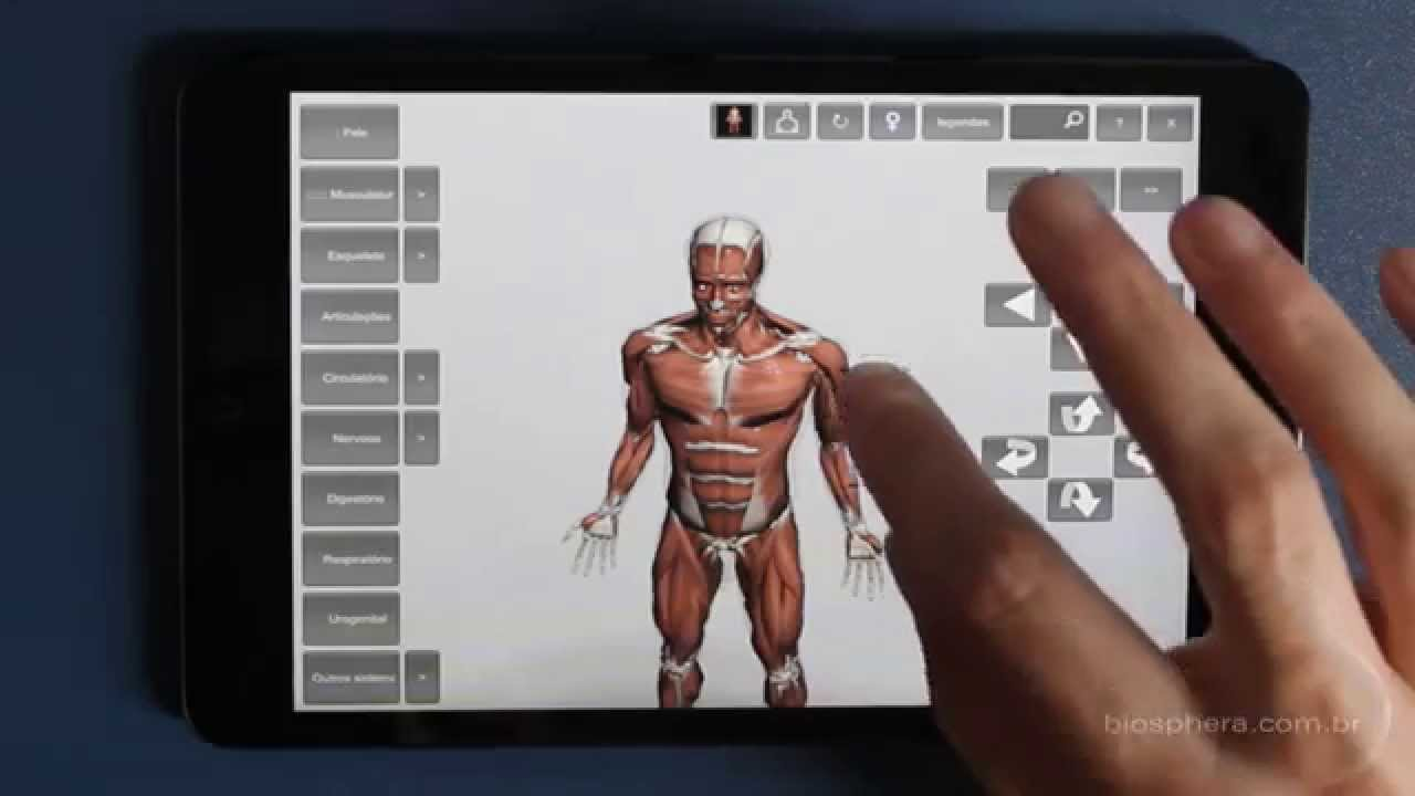 Tutorial: Introd. a Anatomia humana para mobile v0.4 - YouTube