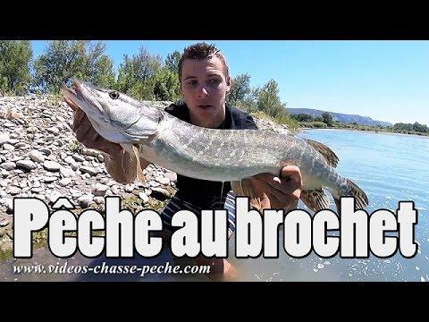 Pêche au brochet - Pêche au carnassier en Durance