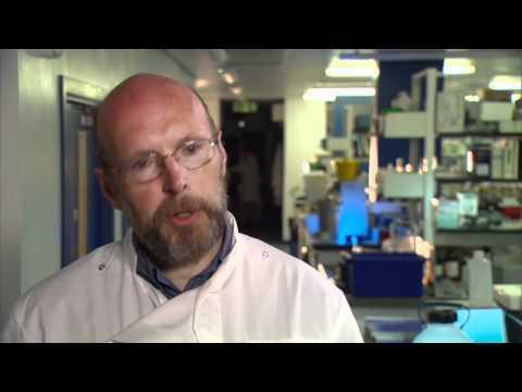 Exgenesis - European Research for diabetes patients