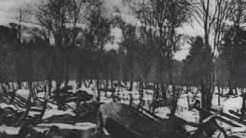 Suomen vapaussota 1918