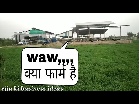 Natural Dairy Farm vadodara Gujrat