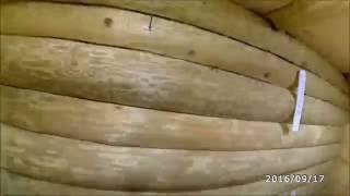видео Встраиваемые светильники деревянный потолок