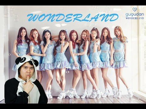 JellyFish Ent. 구구단 (gugudan) - Wonderland MV Reaction