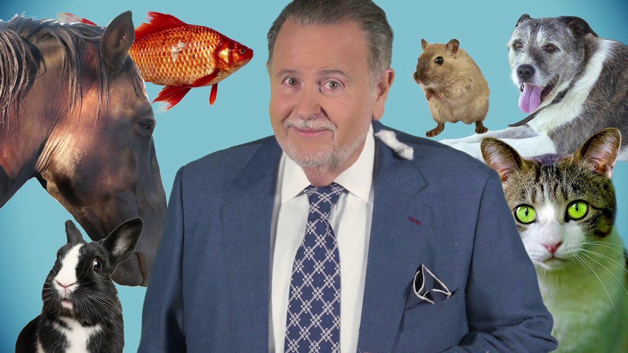 Raúl de Molina lucha contra los elementos climáticos por los animales
