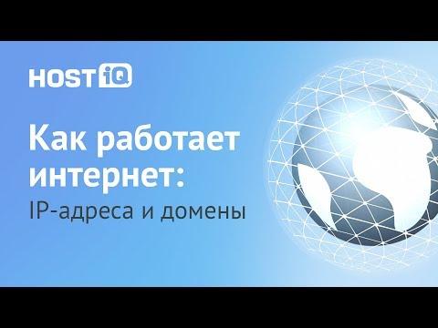 Что такое домен и IP адрес сайта