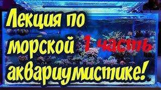 Морской аквариум для начинающих! Теплая дружественная лекция, беседа о морском аквариуме!