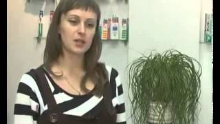 Лечение зубов у беременных женщин(Стоматология для беременных Лечение зубов во время беременности Как лечится кариес при беременности?..., 2015-07-13T18:12:04.000Z)