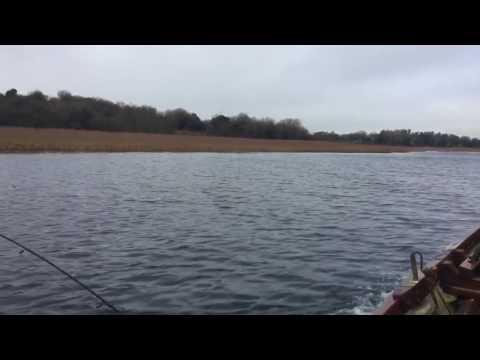 Lough Gowna 5lb Brown Trout