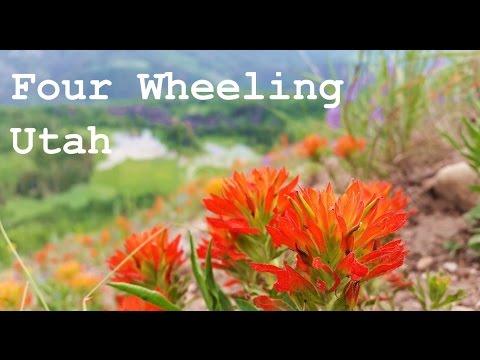 Wasatch Mountains Utah - Four Wheeling
