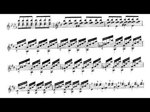 Fernando Sor - Gran Solo, Op.14 for Guitar (Score Video)