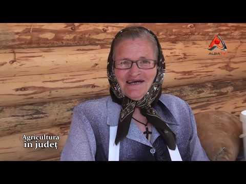 AGRICULTURA IN JUDET 24.05.13 LOMAN