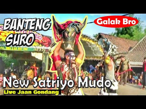 Banteng Suro Makin Ganas !!!---Sangar & Galak !!!-----SERU !!!!--New Satriyo Mudo Live Jaan Gondang