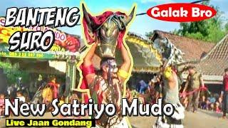 Solah Mantap Banteng Suro Jaranan New Satriyo Mudo Live Jaan Gondang