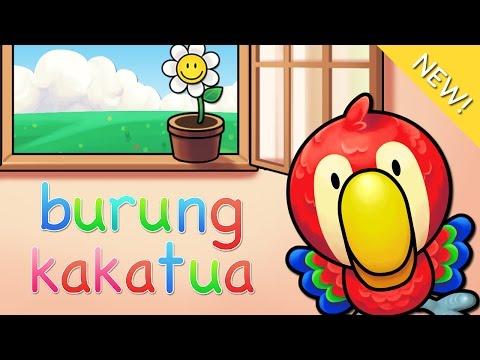 Lagu Anak Indonesia | Burung Kakatua