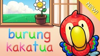 Download Lagu anak Indonesia | Burung Kakatua
