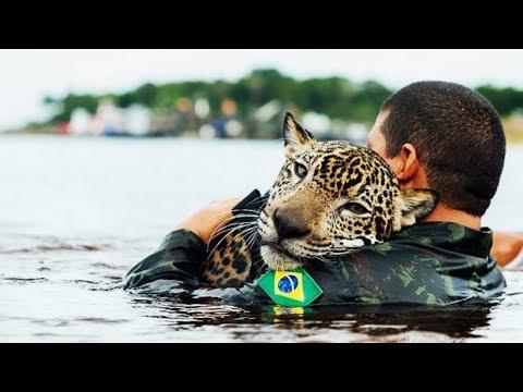 Unglaubliche Menschen, die Tiere Gerettet haben