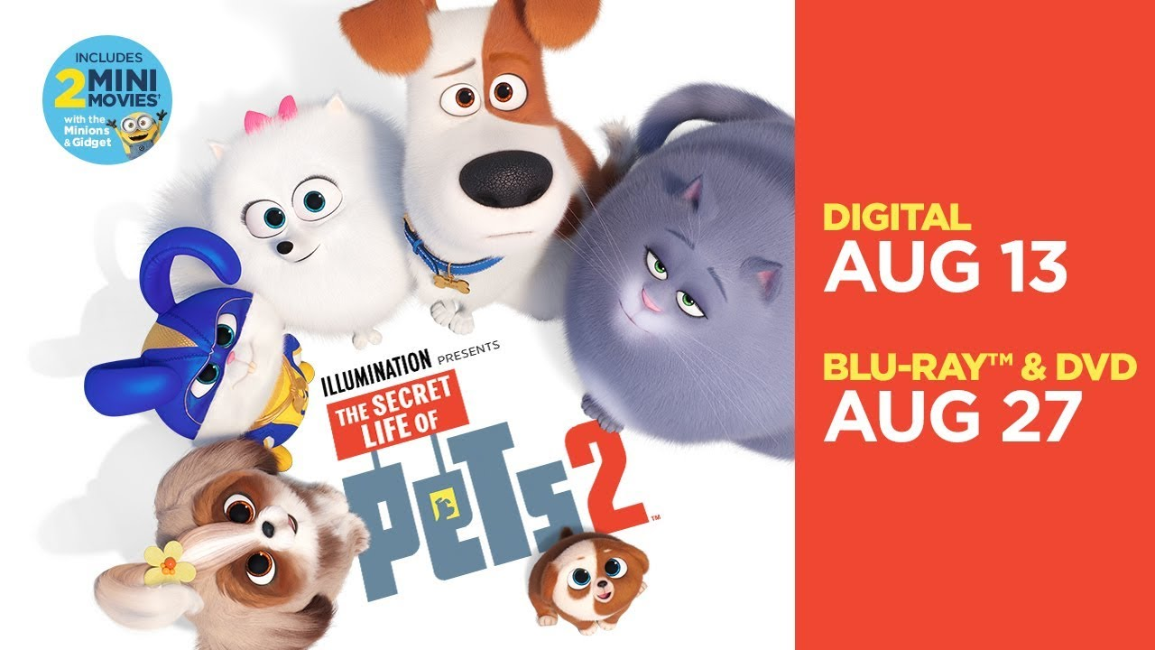 The Secret Life Of Pets 2 Own It On Digital Now 4k Ultra Hd Blu