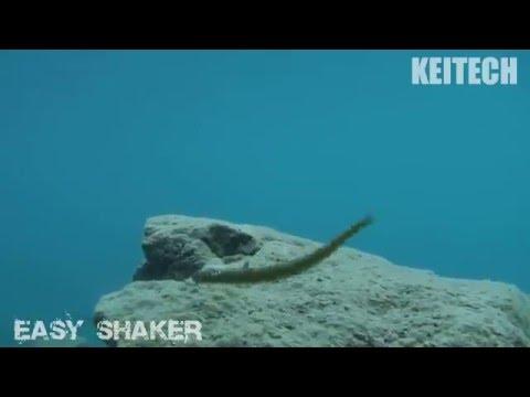 Keitech Easy Shaker 4,5 Gummiwurm 12,2cm Barsch Zander Drop Shot Texas Rig