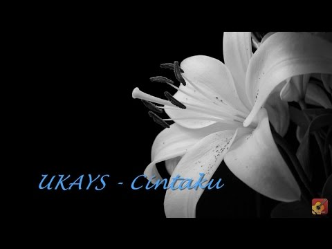 UKAYS - Cintaku ~ LIRIK ~